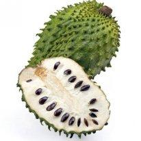 Jamaican Sour Sop Fruit