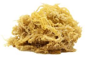 Jamaican Irish Moss