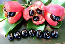 national fruit of jamaica ackee