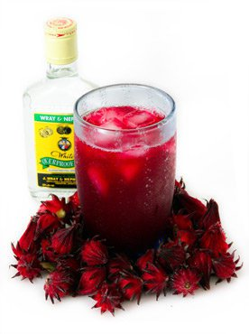 Jamaican Sorrel Drink Recipe