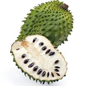 Jamaican Sour Sop Fruit