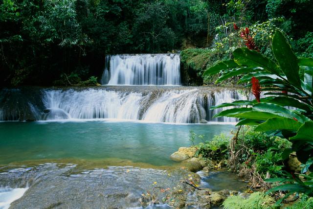 YS Falls St. Elizabeth Jamaica
